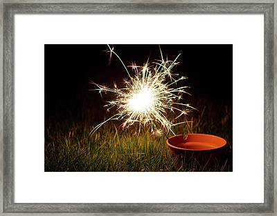 Framed Print featuring the photograph Sparkler In A Plant Pot by Scott Lyons