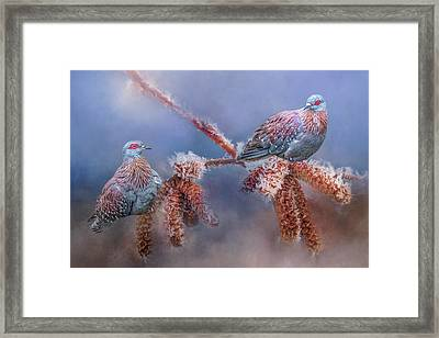 Framed Print featuring the photograph Speckled Pigeons by Cindy Lark Hartman