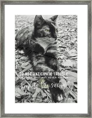 Sphinx Quote Framed Print by JAMART Photography