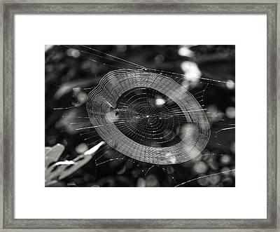 Spinning My Web Framed Print