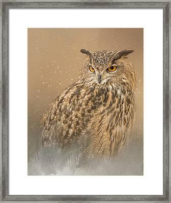 Spirit Of The Snow  Framed Print