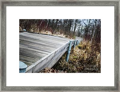 Spring Boardwalk Framed Print