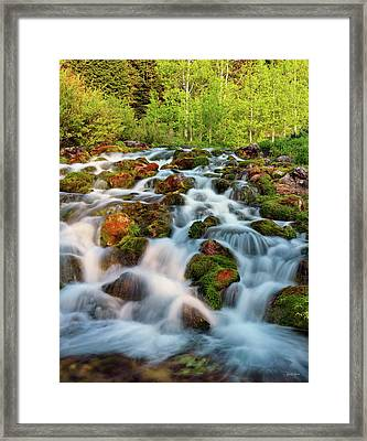 Spring Cascade Framed Print by Leland D Howard