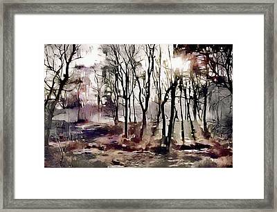 Spring Morning Mist Framed Print