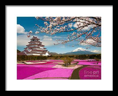 Pink Castle Framed Art Prints Fine Art America