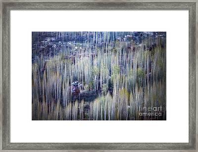 Spring Strokes Framed Print