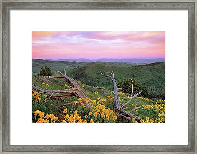 Spring Sunset Framed Print by Leland D Howard
