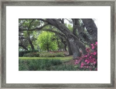 Springtime In The Park Framed Print