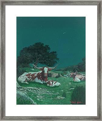 Stars Over Texas Framed Print