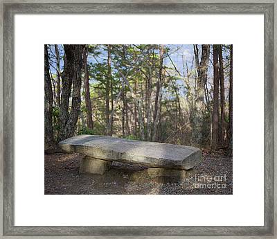 Framed Print featuring the photograph Stone Bench by Patrick M Lynch