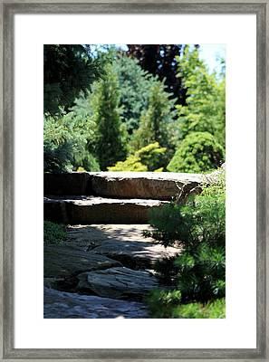 Stone Stairs In Chicago Botanical Gardens Framed Print