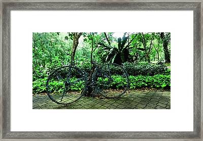 Stroll In Bangkok Framed Print