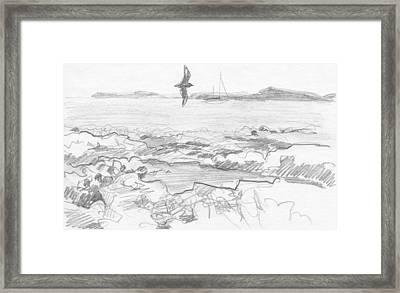 Subantarctic Island Framed Print