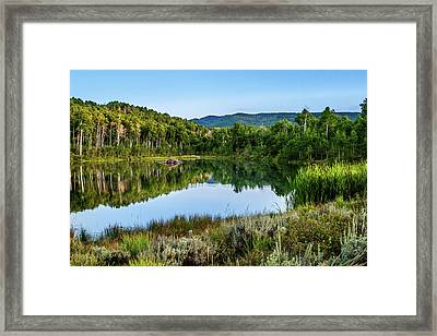 Framed Print featuring the photograph Summer Cove At Ivie Pond by TL Mair