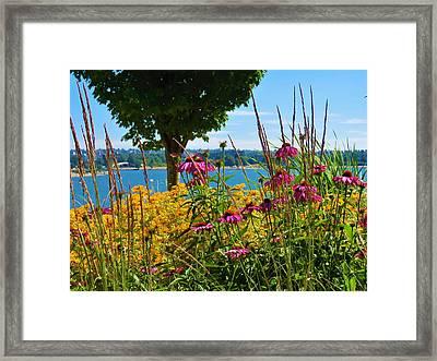 Summer Flowers Vancouver 1 Framed Print