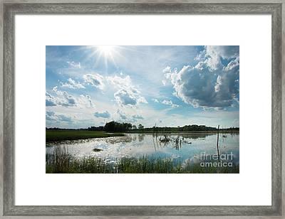Summer Reflections Framed Print