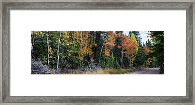 Framed Print featuring the photograph Sunday Drive Wide Panoramic View by James BO Insogna
