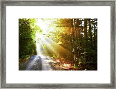 Sunflare On Road Framed Print