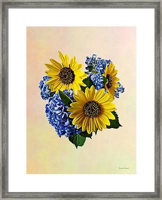 Sunflowers And Hydrangeas Framed Print by Susan Savad