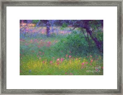 Sunset In Flower Meadow Framed Print