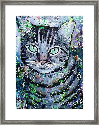 Tabby Cat Framed Print by Jennifer Charton