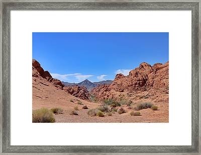 Taking The Backroad  Framed Print