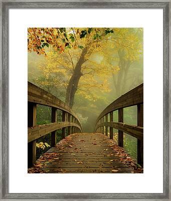 Tanawha Trail Blue Ridge Parkway - Foggy Autumn Framed Print