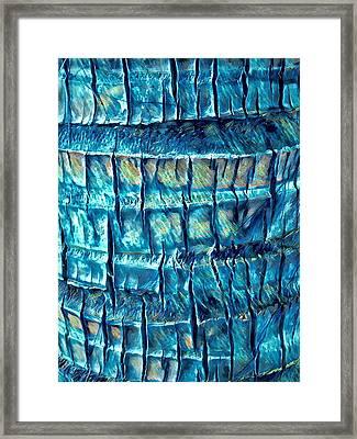 Teal Palm Bark Framed Print