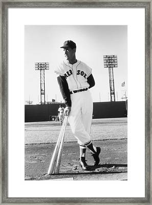 Ted Williams Framed Print by Slim Aarons