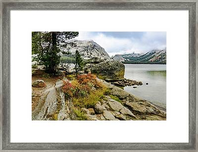 Tenaya View Framed Print