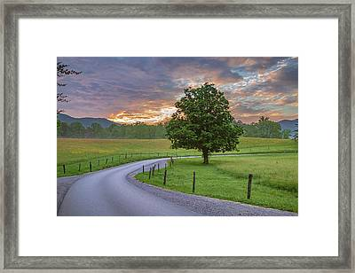 Tennessee Mountain Dew Framed Print