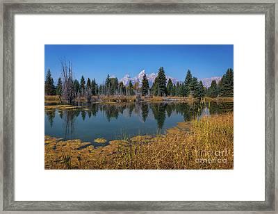 Tetons Majesty Framed Print