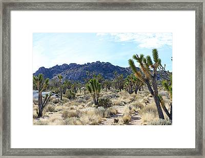Teutonia Peak Trail Framed Print