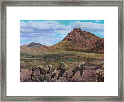 The Cholla At Mount Mcdowell, Arizona Framed Print