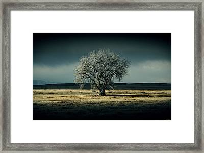 The Cold Framed Print