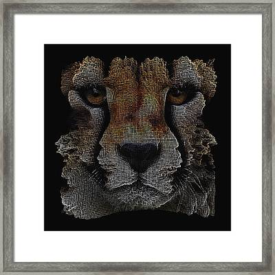 The Face Of A Cheetah Framed Print