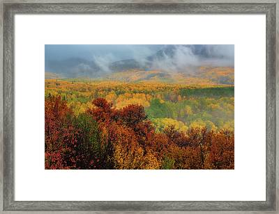 The Feeling Of Fall Framed Print