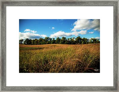 The Field Framed Print
