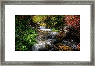 Framed Print featuring the photograph The Giving Stream by TL Mair