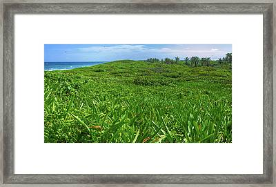 The Green Island Framed Print
