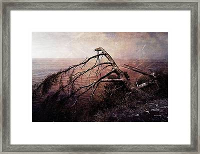 Framed Print featuring the photograph The Invisible Force by Randi Grace Nilsberg