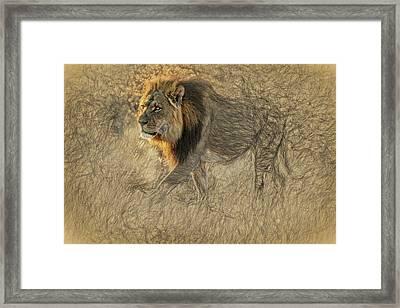 The King Stalks Framed Print