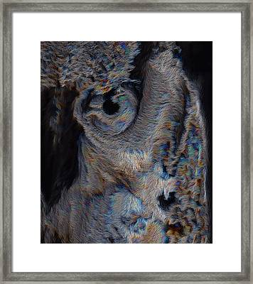 The Old Owl That Watches Framed Print
