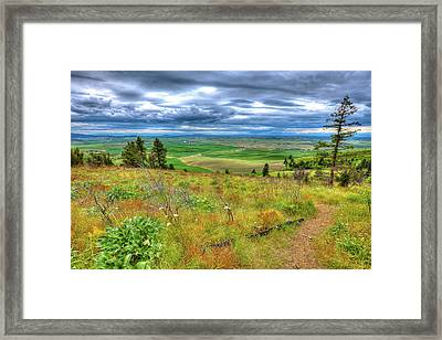 Framed Print featuring the photograph The Path Down Kamiak Butte by David Patterson