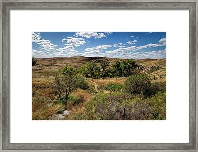 Framed Print featuring the photograph The Path To St. Jacob's Well by Scott Bean