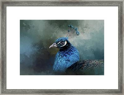 The Peacock's Crown Framed Print