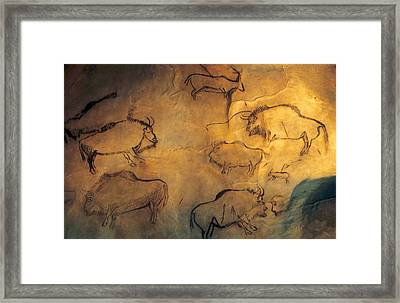 The Prehistoric Cave Of Niaux Arige Framed Print