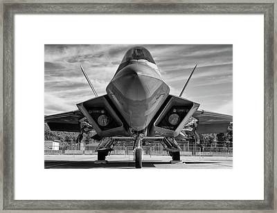 The Raptor Waits Framed Print