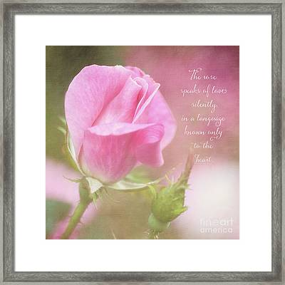 The Rose Speaks Of Love Photograph Framed Print