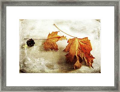 Framed Print featuring the photograph The Sound Of Autumn by Randi Grace Nilsberg